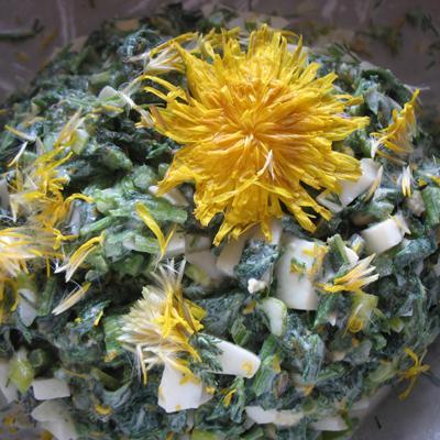 recepty-vesennego-menyu-salat